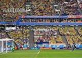 日本代表ロシアW杯ベスト16Memorial 永久保存版(フットボール批評増刊) 画像