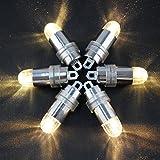 ARDUXバルーンライト、非点滅LED防水バルーンライトパーティーウェディング誕生日フェスティバルのペーパーランタンバルーンデコレーション(24個入)