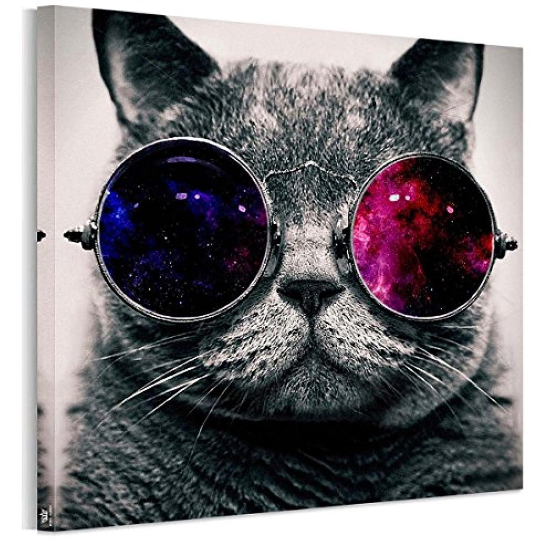 アートパネル完成品 フォトフレーム 猫 かわいい インテリア 雑貨猫 壁キャンバス絵画 猫 インテリア 動物 50*50cm*1