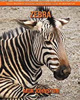 Zebra: Tolle Bilder & Wissenswertes ueber Tiere in der Natur