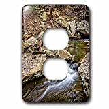 3dローズLSP _ 244272_ 6Wolf Creek in the Little River Canyon National Preserve 2プラグコンセントカバー