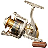 DIWA Spinning Fishing Reels for Saltwater Freshwater 1000 2000 3000 4000 5000 6000 Series Left/Right Interchangeable Trout Sp