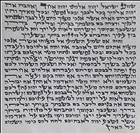 Kosher 7cm Mezuzah Scroll 2.8 Inch klaf Mezuza Parchment 【Creative Arts】 [並行輸入品]