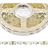 24VDC RGB+CCT 5 Chips in 1 Super Bright LEDs Flexible LED Strip Lights, High CRI 93 Color Changing+Tunable White Non-Waterpro