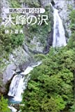 大峰の沢―関西の沢登り〈2〉 (関西の沢登り (2))