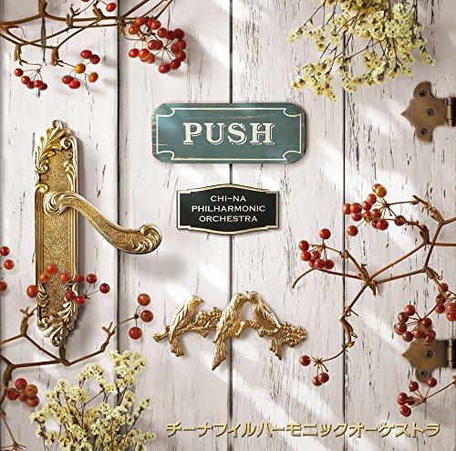 PUSHの詳細を見る
