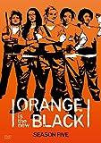 オレンジ・イズ・ニュー・ブラック シーズン5 DVD コンプリートBOX【初回生産限定】[DVD]