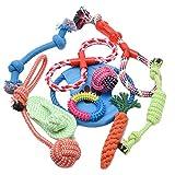WOLFWILL 清潔-10個セット ペットおもちゃ 噛んでも大丈夫 ロープ ぬいぐるみ 玩具 耐久性 安全 歯ぎしり