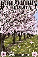 ドア郡、ウィスコンシン–Cherry Blossoms 12 x 18 Art Print LANT-34110-12x18
