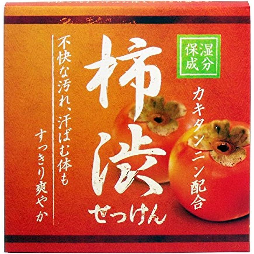 縞模様の想起に対処するクロバーコーポレーション 柿渋配合石けん 石鹸 セッケン せっけん HYA-SKA 80g×3
