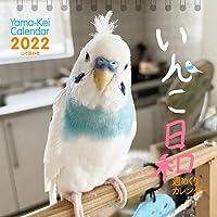 【Amazon.co.jp 限定】カレンダー2022 週めくりカレンダー いんこ日和 (卓上/壁掛け・リング)【特典デー…