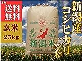 新潟県産 コシヒカリ 平成29年産 検査1等米 玄米 25kg 「玄米色彩選済み」