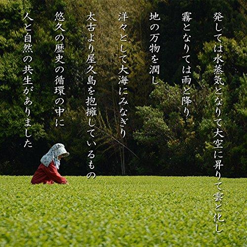 """《 私たちが作った""""粉末緑茶""""です 》 屋久島自然栽培茶「パウダーティー」100g×2袋 圃場:有機JAS認定大崎農場 【無農薬・無化学肥料・農薬無飛散】"""