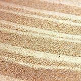 砂場用乾燥砂 さらさらあそび砂【ブラウン】20kg(13.3L)
