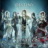DESTINY -THE LOVERS-(初回限定盤B)(DVD付)