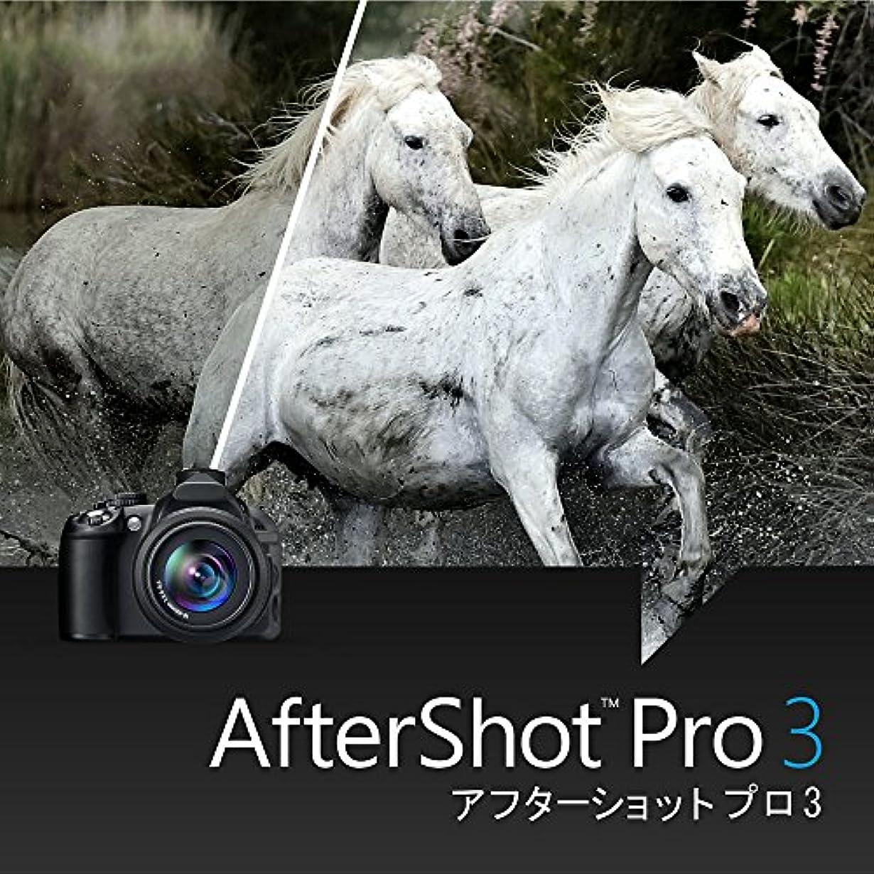 哲学者ワークショップグリルCorel AfterShot Pro 3 アップグレード版 ダウンロード版