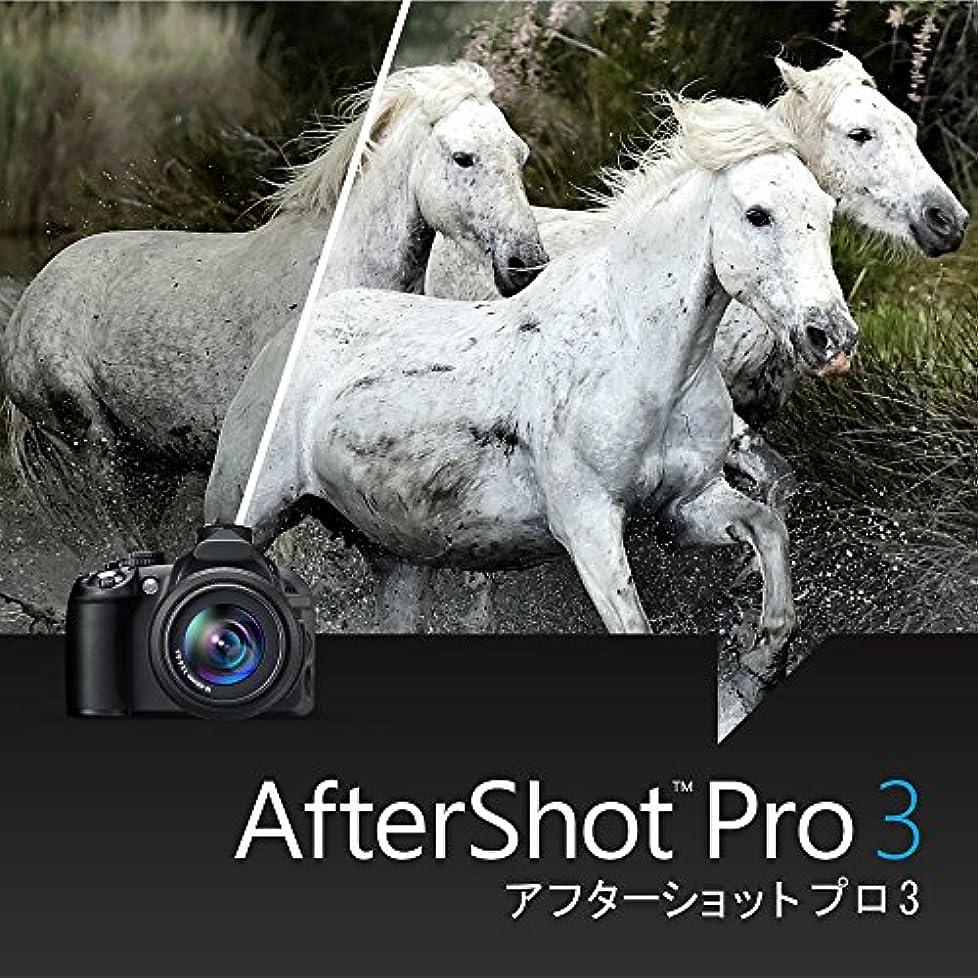 簡単なダイジェスト夫婦Corel AfterShot Pro 3 アップグレード版|ダウンロード版