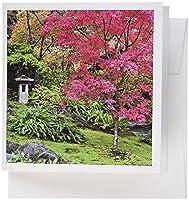 Danita Delimont–Robティレー–日本庭園–アメリカ、ワシントン、シアトル、Arboretum Japanese Garden–グリーティングカード Set of 12 Greeting Cards