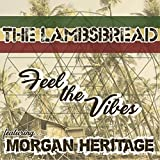 Feel The Vibes (feat. Morgan Heritage) - Single