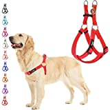 """PUPTECK No Pull Dog Harness Adjustable Basic Nylon Step in Puppy Vest Outdoor Walking Chest Girth 15.6""""-23.9"""" Medium"""