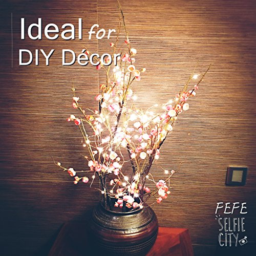 FEFE LED Starry STRING LIGHTS (100 Leds, 33 ft, Warm White) Copper Wire Lights IDEAL for DIY Décor Rope Lights Seasonal Decorative for Christmas Holiday, Wedding, Party [並行輸入品]
