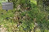 LANDSCAPE DESIGN No.129 グリーンインフラとランドスケープ 2019年 12月号 (LANDSCAPE DESIGN ランドスケープデザイン) 画像