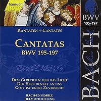 Bach Cantatas BVW 195-197