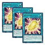 【 3枚セット 】遊戯王 日本語版 DP19-JP009 Cocoon of Ultra Evolution 超進化の繭 (レア)