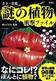宝島社 船山 信次 カラー図鑑 謎の植物 衝撃ファイルの画像