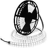 ALITOVE 32.8ft LED Strip Lights Daylight White Waterproof IP67 6000K 24V DC 10m 600 LEDs 5050 SMD Outdoor LED Tape for Kitche