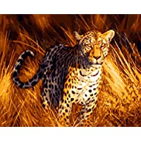 YEESAMアートペイントby Numberキットfor Adults Kids – Cheetah Panther Leopard 16 X 20 INCHリネンキャンバスwithout木製フレーム