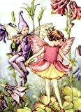"Counted Cross Stitch Pattern: ""The Columbine Fairy"" by Cicely Mary Barker, PROFESSIONALLY EDITED Fairies: Flower Fairies (The Flower Fairy Series) (English Edition)"