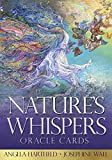 Nature'S Whispers Oracle Cards 画像