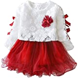 Alinory Baby Girl Dress, Comfortable Lace Princess Dress Baby Girl Suit Long Sleeve Clothes Dress(90cm-Wine red)