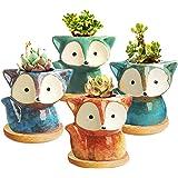 Succulent Pot, Mini Flower Pot Ceramic Succulent Planter for Small Plant, 4 Pack