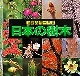 日本の樹木 (山渓カラー名鑑) 画像