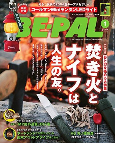 BE-PAL(ビーパル) 2017年 01 月号 [雑誌]の詳細を見る