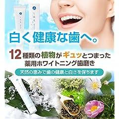 薬用しろえ歯磨きジェル ホワイトニング歯磨き粉 医薬部外品 はみがき粉 50g 日本製