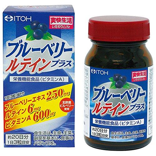 井藤漢方製薬 ブルーベリールテインプラス 約20日分 300mgX60粒