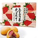 福岡土産 あまおう苺チョコクッキー 20個入り