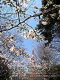 月刊 東京タワーvol.8 花景色 2007-2017 (月刊デジタルファクトリー)