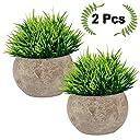 観葉植物 フェイクフラワー インテリアにあわせやすい人工植物 インテリア 雑貨 造花 バスルーム 事務室 リビング 窓際の飾りとしても 親友への贈り物としても適する