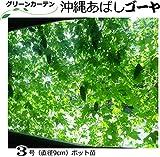 ゴーヤ苗グリーンカーテン用特売・沖縄あばし (直径9cmポット苗)10ポットセット ニガウリ