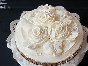 レアチーズ タルト ケーキ 直径約15センチ(5号サイズ)