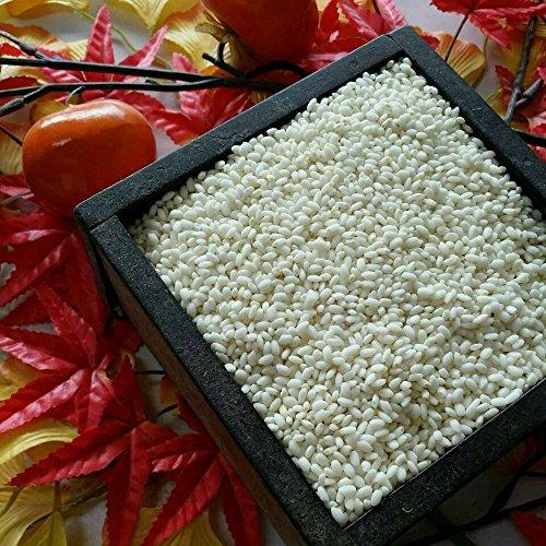 令和元年 熊本県産 もち米 ひよくもち 精白米 20kg