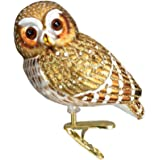 Old World Christmas Ornaments: Pygmy Owl Glass Blown Ornaments for Christmas Tree