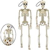 "Halloween Decorations Skull, 16"" Full Body Realistic Faux Human Skeleton Halloween Skull Decor 2 Packs"