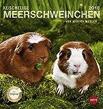 Meerschweinchen 2018. Postkartenkalender