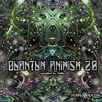 Quantum Animism 2.0
