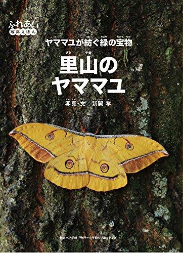 里山のヤママユ: ヤママユが紡ぐ緑の宝物 (ふれあい写真えほん)の詳細を見る